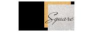 شعار سيلفر سكوير
